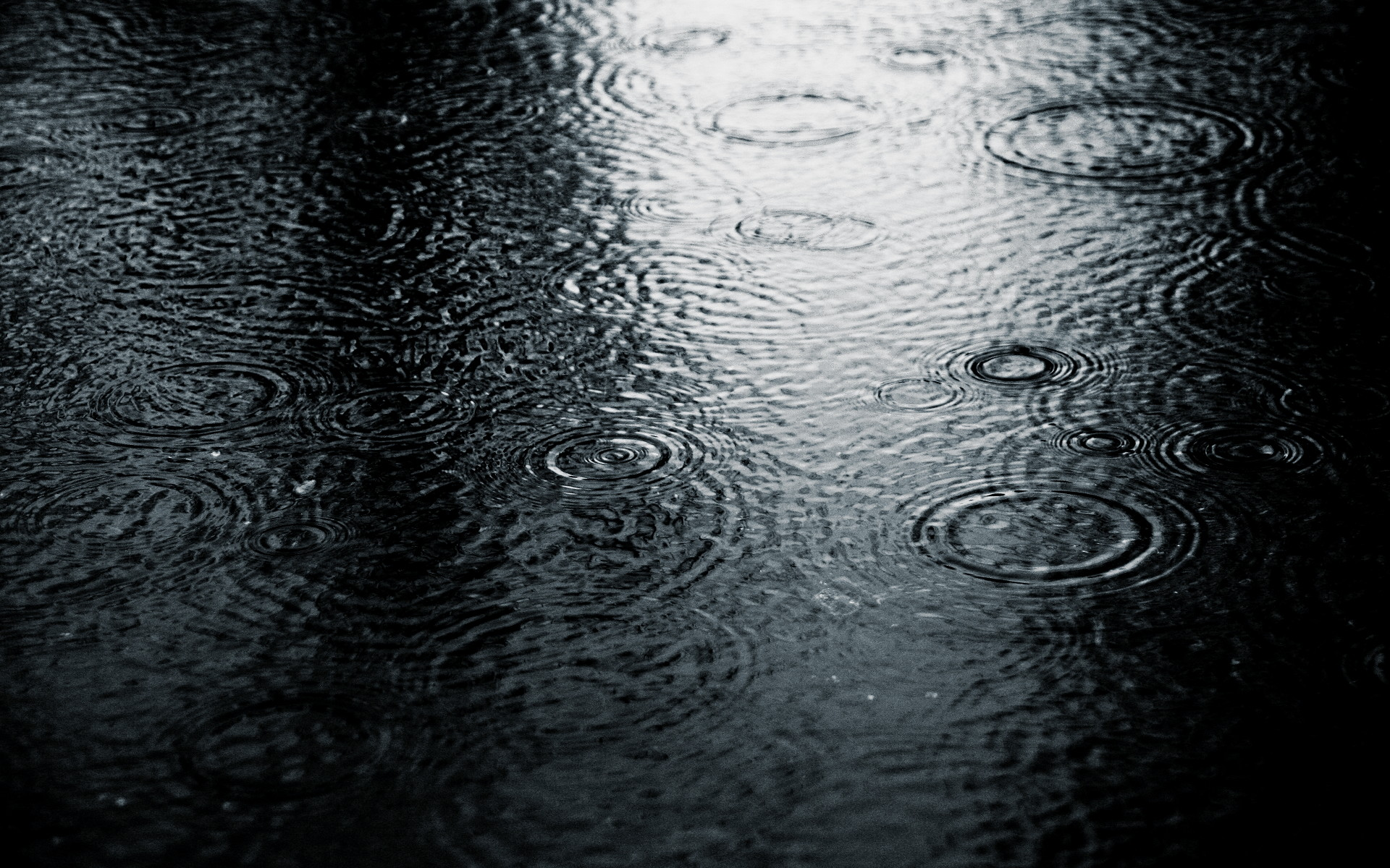 Faze Rain Wallpaper 1920x1080