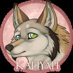 Kaliyah Badge 1
