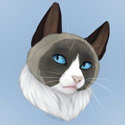 Cat Portrait (+Speedpaint Video)
