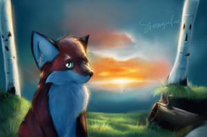That's not where I'm going by strange-fox