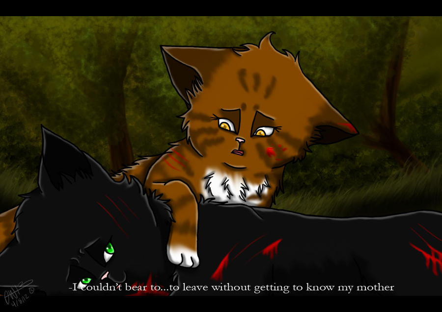 Warrior Cats Mothwing And Willowshine The Last Hope- Hollyleaf by