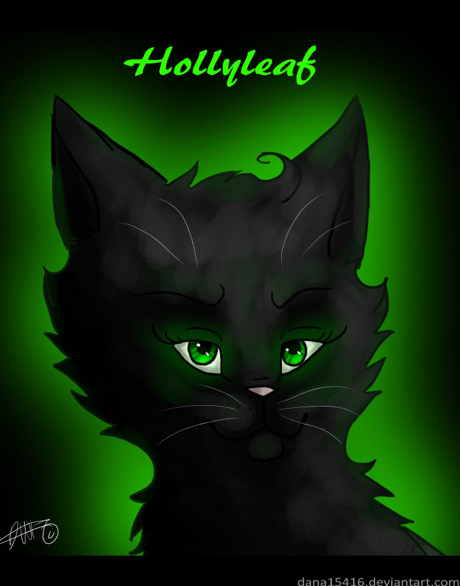 Hollyleaf Warrior Cats By Liracal