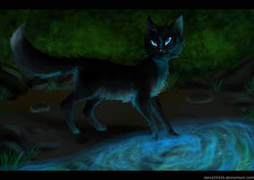 Mistystar .:Warriors:. by liracal