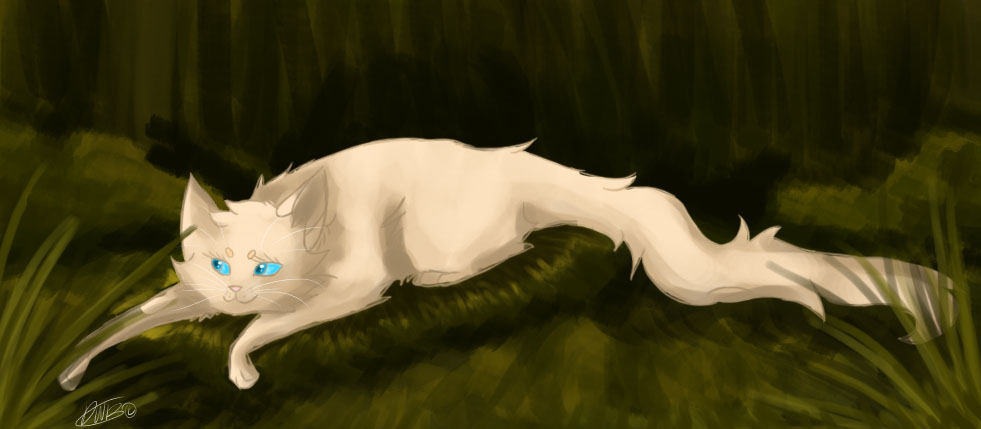 Daisy .:Warrior Cats:. by liracal