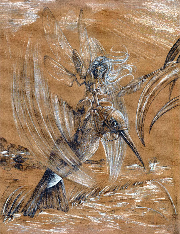 Fairy hummingbird raider by Tanathiel