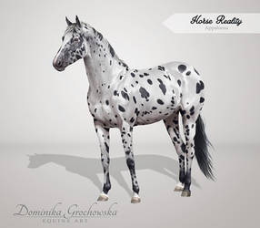 Commission: Appaloosa Mare Greyscale by RossaCara