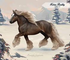 Horse Reality - Irish Cob