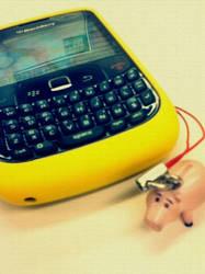 Blackberry Pig