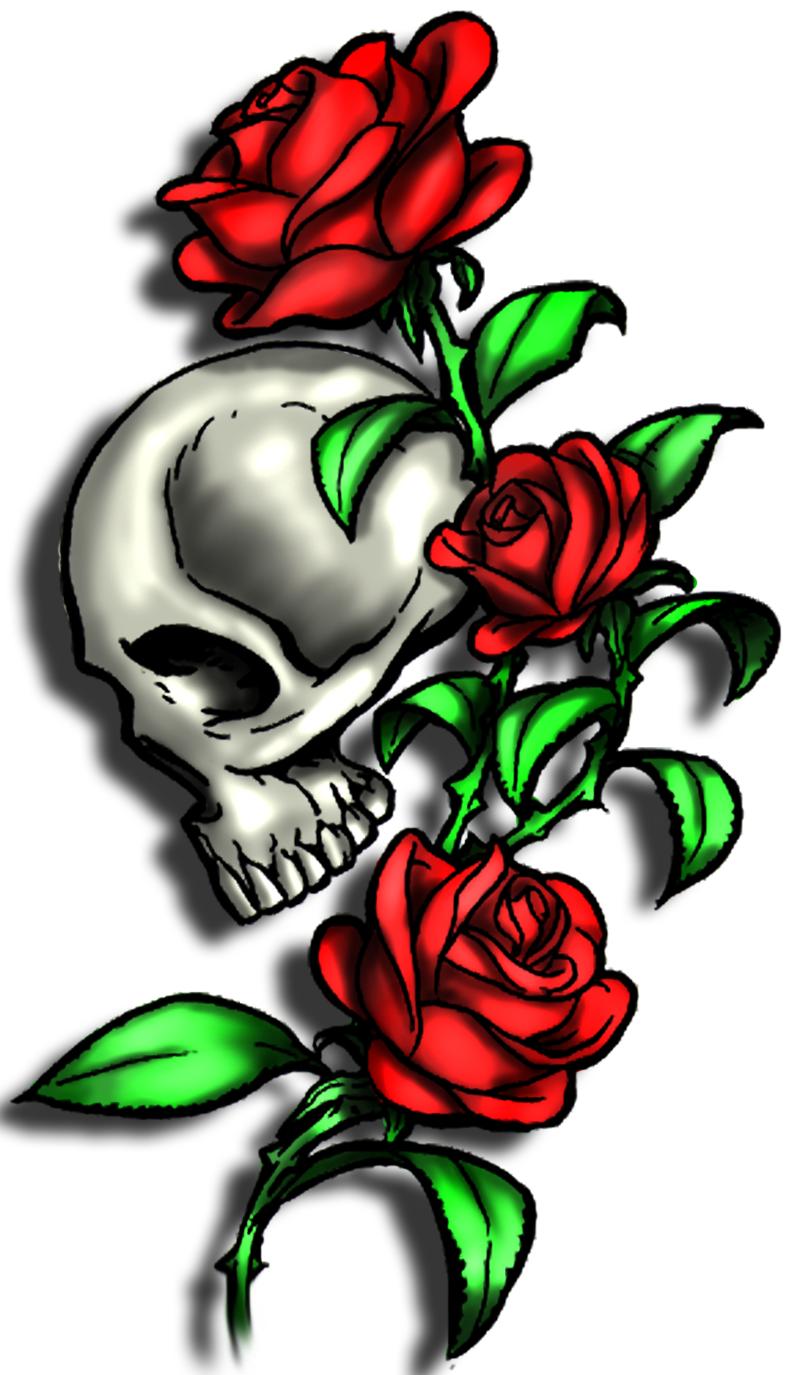 Skull with Roses 2 by xKornsFreakx on DeviantArt