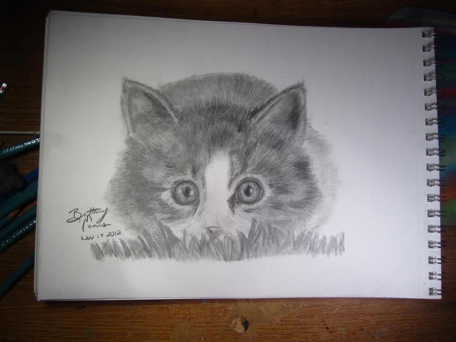 A Kitten In The Grass by BrittanyAnnxOx