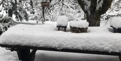Snowmagedden