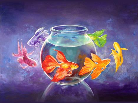 Goldfish XII