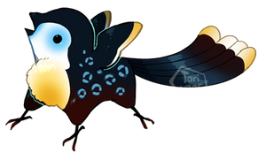 Snow Toucan by toripng