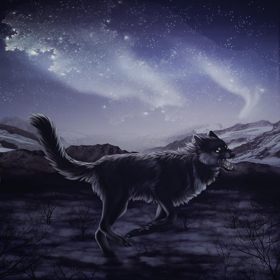 Northern night. by KamioKitsune