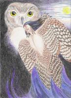 Owl Shaman by Vivienne-Mercier