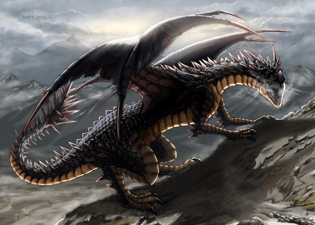 Degzauth - The Unstable  Black_dragon_by_shafiqur-d6o9i81