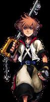 Sora (Ventus Reincarante AU) Kingdom Hearts 1-COM