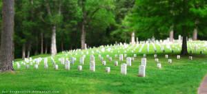 Tilt-Shift Cemetery