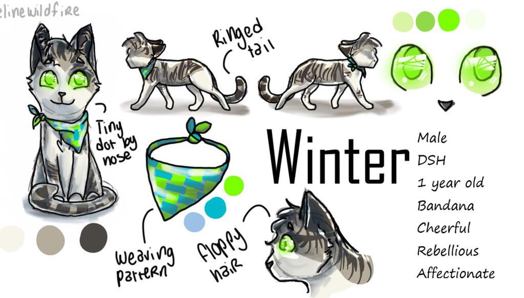 Winter Oc Reference Sheet by felinewildfire
