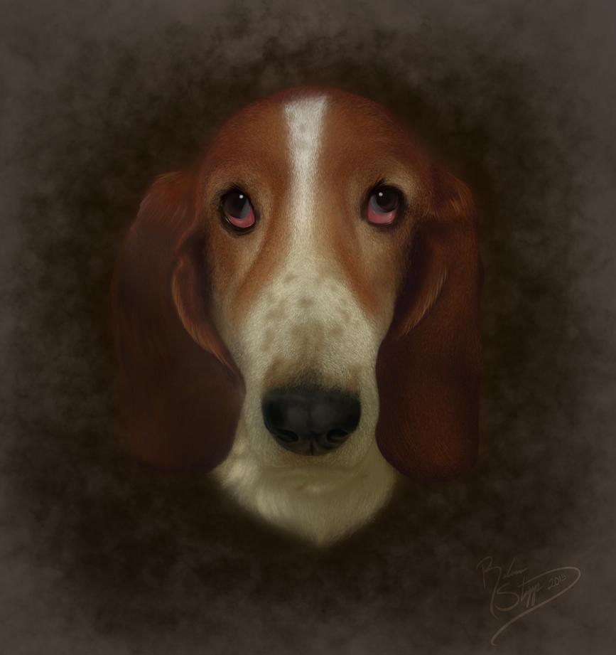Honey the Basset Hound by RebeccaStapp