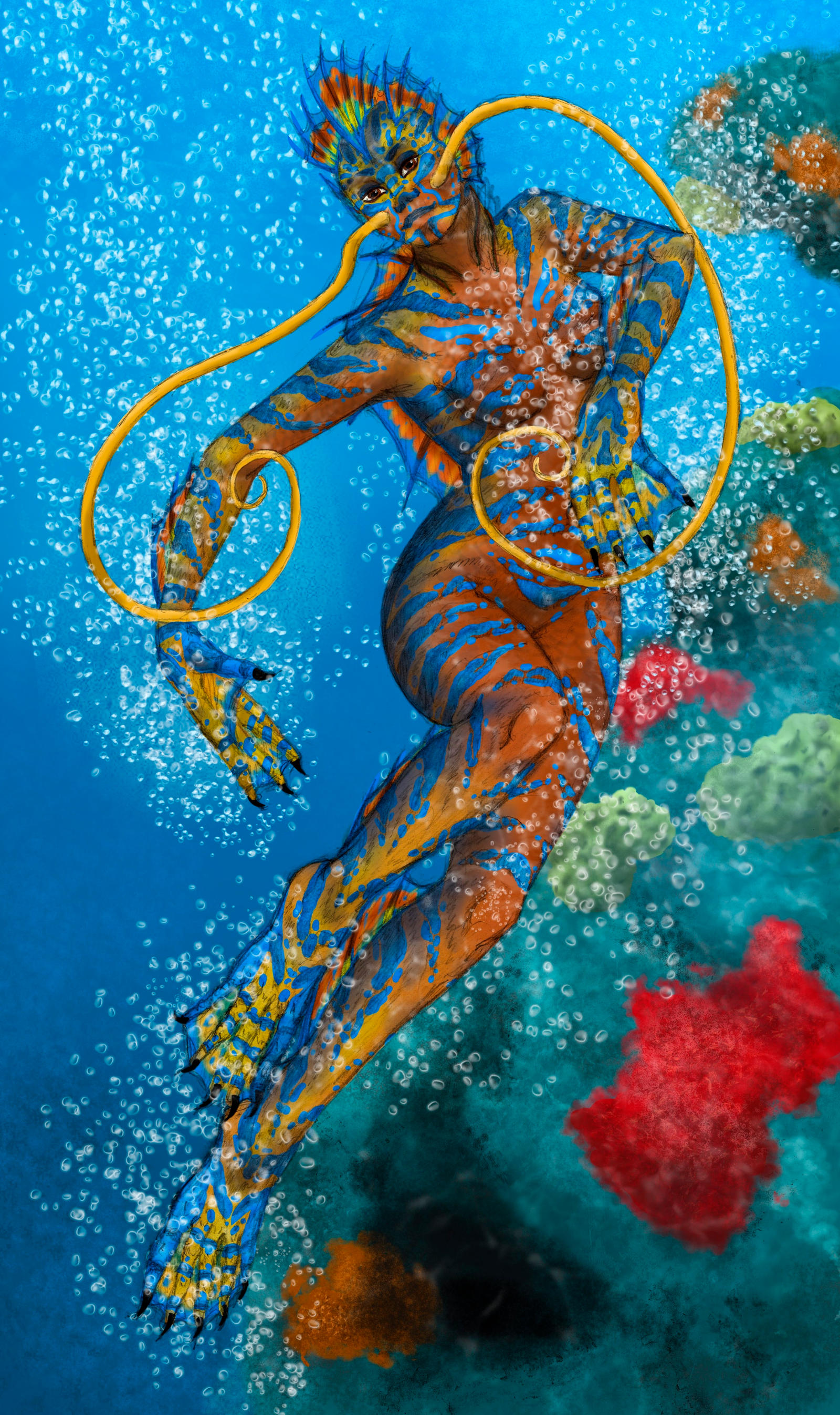 Parrotfish by dreamofwings