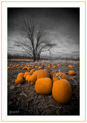 Pumpkins Past by jnati