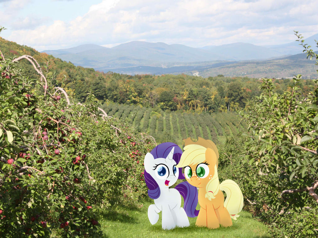 Diaries - Orchard by postcrusade
