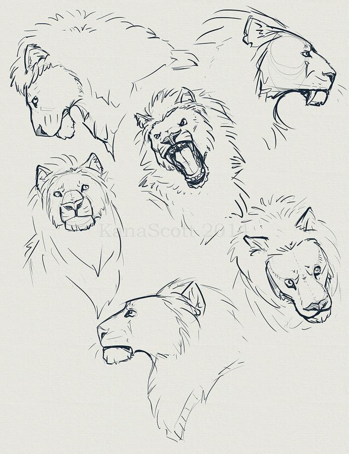 Liondump by KanaScott