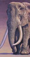 Elephant Door Guard 2