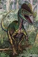 Dilophosaurus by WillemSvdMerwe