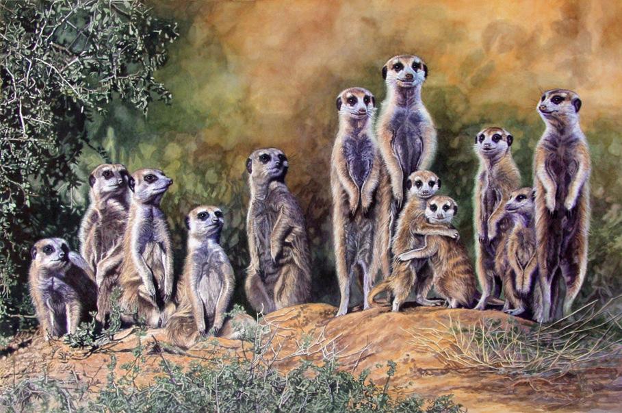 Meerkats 2 by WillemSvdMerwe
