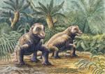 Keratocephalus Updated