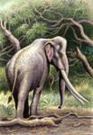 Palaeoloxodon (=Elephas) recki in colour
