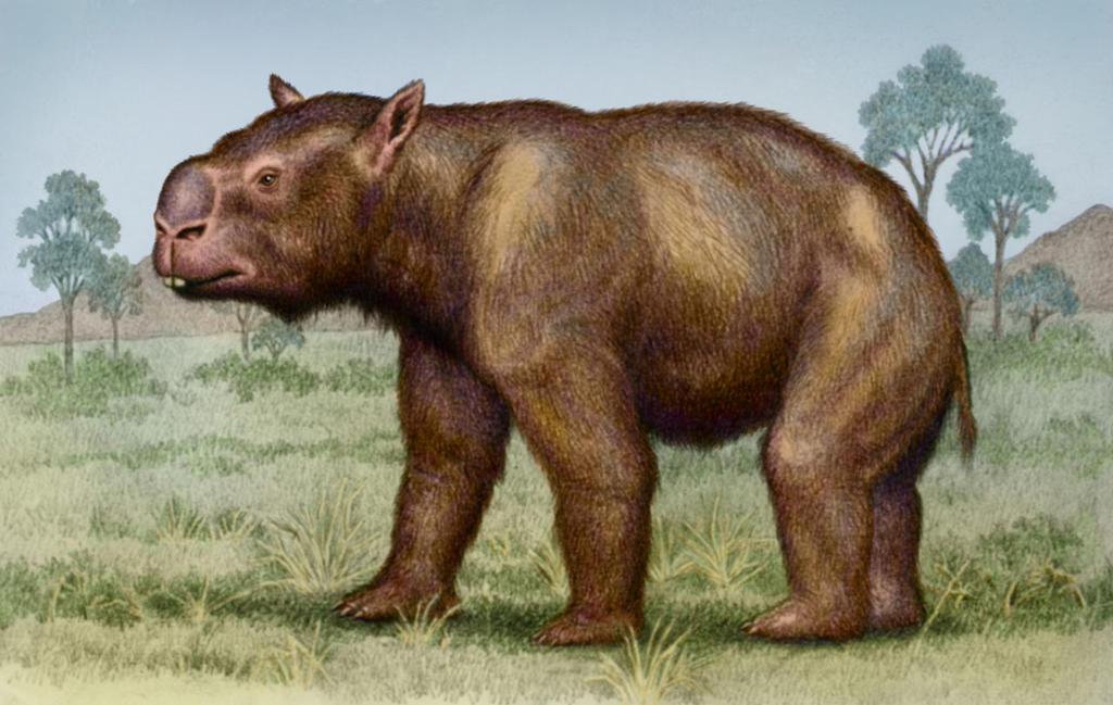 Diprotodon - Wikipedia