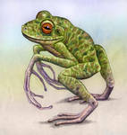 New Caledonian Bipedal Frog, 5 002 015