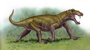 Lobalopex mordax