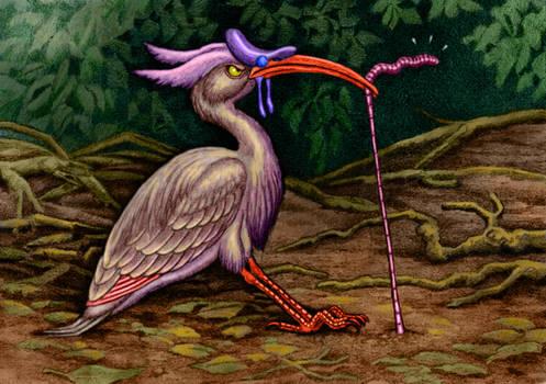 Saddlebill Ibis
