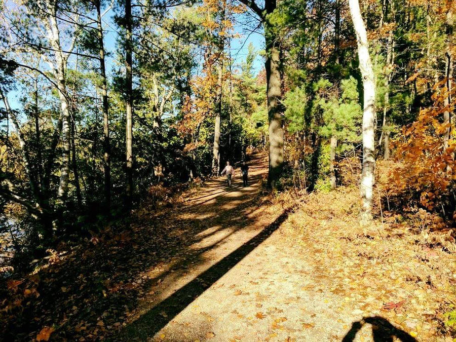 T.A.R.T Trail by ravenskye