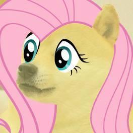 doge_flutter_shy_by_rayscratch-d6r8v8e.jpg
