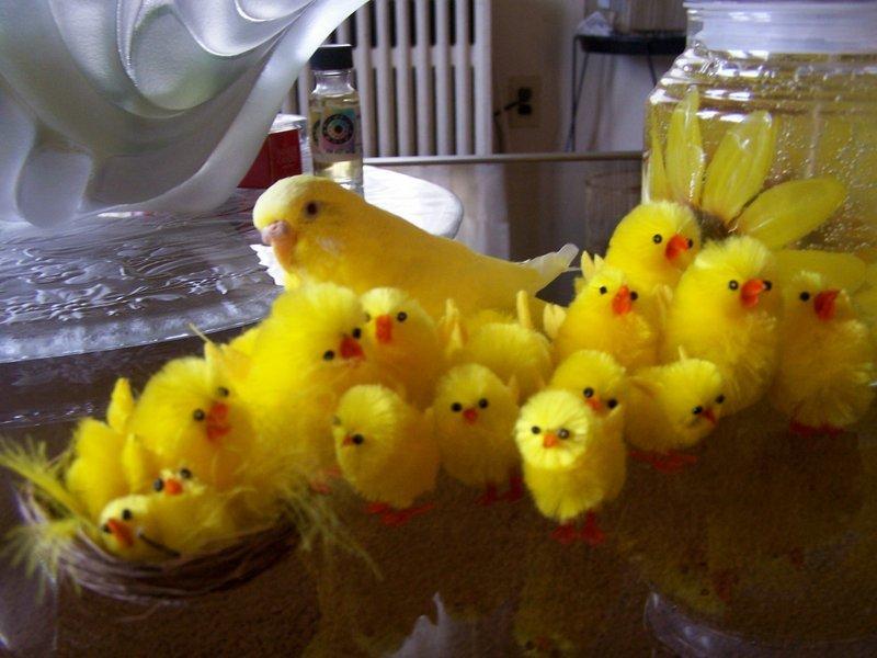 Happy Easter Guys