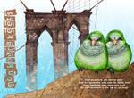 Brooklyn Parakeets