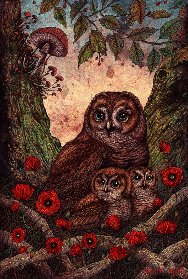 Tawny Owlets by AngelaRizza