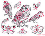 Flight Flash Sheet