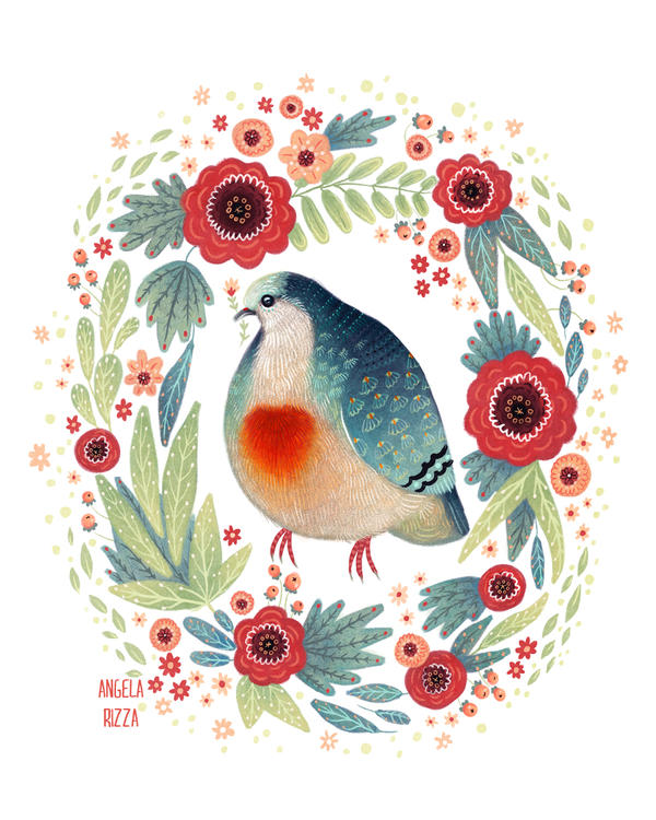 Fruit Dove I by AngelaRizza