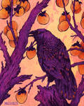 Raven and Persimmons