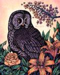 Grey Owl At Sunset