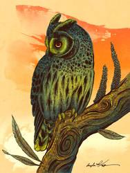 Dusk Owl