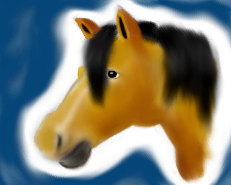 Horse by Gandi24