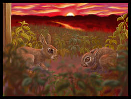 Watership Down: The Field... by Ayemae
