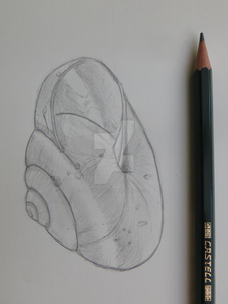 snail shell by nannyoggskitchen